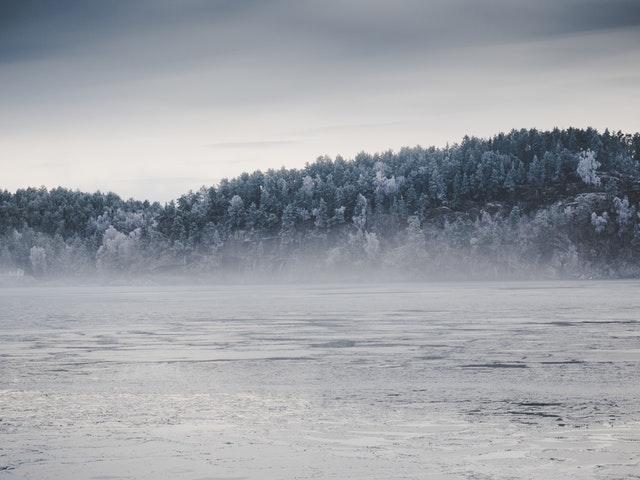 zamrzlé jezero a les